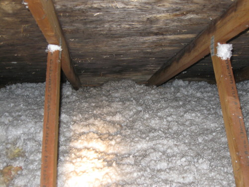 Mold Found In Attic On A Boise Home Inspection Bent Nail
