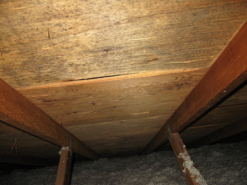 Microbial Contamination in Attic from Improper Attic Ventilation